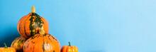 Ripe Pumpkins On A Blue Backgr...