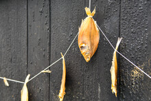 Dried Fish Against A Black Tar...