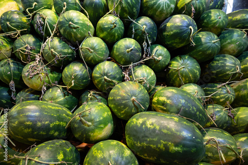 Foto Fresh harverst of watermelons on a stall