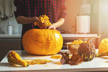 Woman Prepare Pumpkin For Halloween Holiday Decoration Remove Seeds At Home Kitchen