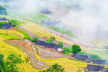 Clouds Over Terraced Rice Padd...