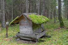 Old Construction Of Wild Animal Feeder With Growing Moss On Roof In The Middle Of Old And Dark Forest. Roof Is In Camera Focus
