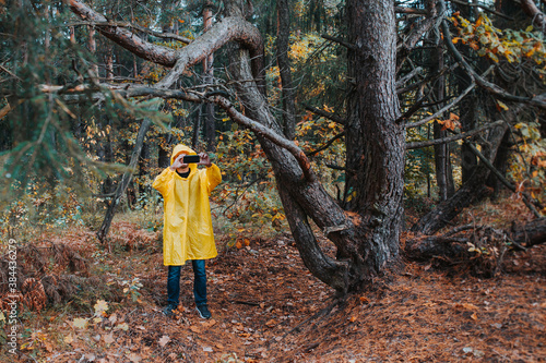 Tourist traveler in a dense coniferous forest in the rain photographs the surrou Fototapet