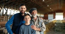 Three Male Generations In Green Field At Cattle Farm. Caucasian Grandfather, Father And Son Smiling To Camera And Standing At Stable With Sheep Flock. Shepherds. Old Man Farmer With Son And Grandson.