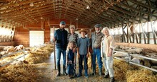 Portrait Of Happy Caucasian Family Of Three Generations Standing In Shed With Livestock And Smiling. Old Parents With Children And Grandchildren In Stable. Farmers With Kids At Farm. Zooming Out.