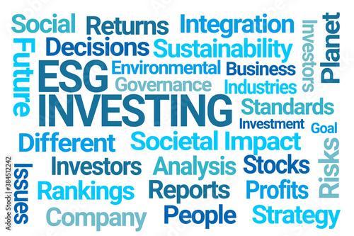 Obraz ESG Investing Word Cloud on White Background - fototapety do salonu