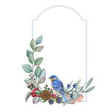 Winter Decorative Frame With Bluebird Watercolor Illustration. Hand Drawn Festive Vintage Decoration With Natural Forest Elements: Eucalyptus Leaves, Blackberry, Juniper, Pine Cone And Wild Song Bird