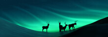 Silhouette Of Reindeer Under Aurora. 3d Illustration
