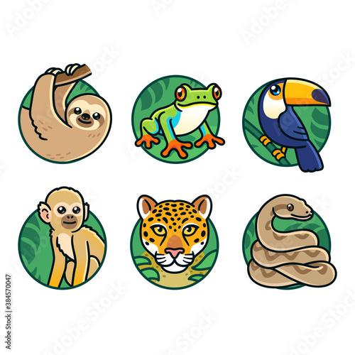 Naklejka premium Cartoon rainforest animals set