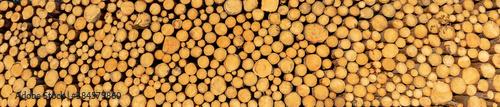 A pile of tree logs Fototapet