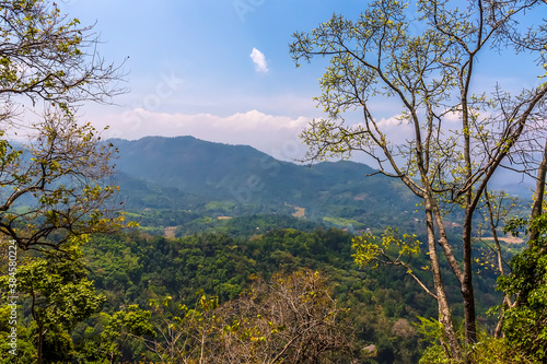 A view of the jungle and mountains from the Kandy to Columbo mainline railway in Wallpaper Mural