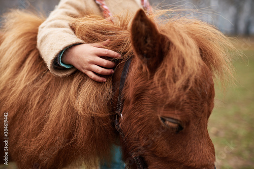 Shot of unrecognizable child gently touching cute chestnut pony mane