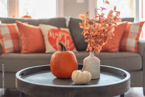 Fototapeta Fall home decor in gray and orange tones obraz