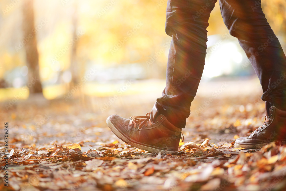 Fototapeta Autumn Park man walking along a path foliage