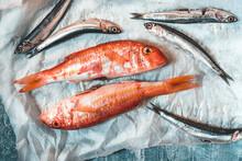 Fresh Trill Fish (triglia) Or ...
