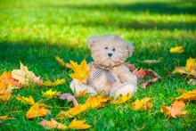 Cute Little Teddy Bear With Co...