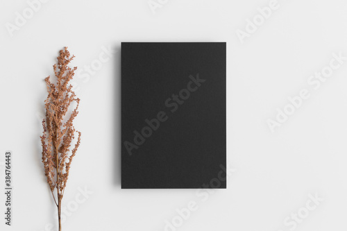 Fotografie, Obraz Invitation black card mockup with a dry flower