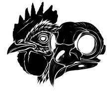 Vector Mascot Of Rooster Head And Skull Illustration Art