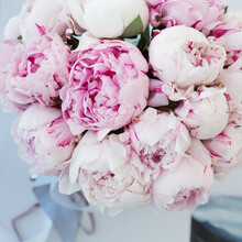 Bouquet With Pink Peonies Of The Sarah Bernhardt Variety