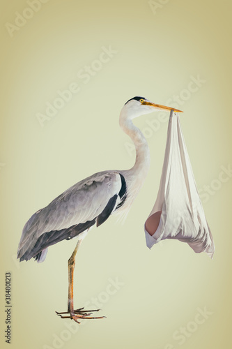 Stampa su Tela Retro styled image of a stork holding a newborn baby in a blanket