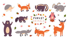 Set Of Cute Forest Animals On A White Isolated Background. Children S Vector Illustrations
