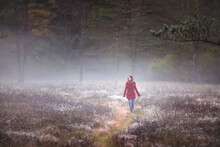 Woman Walking In A Misty Forest