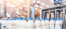 Machine For Bottling Milk, Industry Equipment Dairy Plant
