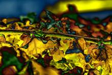 Ilustración Que Representa El Otoño, Cuando La Naturaleza Y Los Paisajes Adquieren Tonalidades Cálidas Y Colores Más Brillantes E Intensos Como El Amarillo Dorado, Rojo Oscuro, Terracota Y Verde Claro