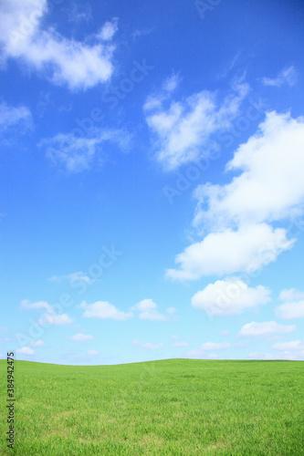 草原の空と雲 Wallpaper Mural