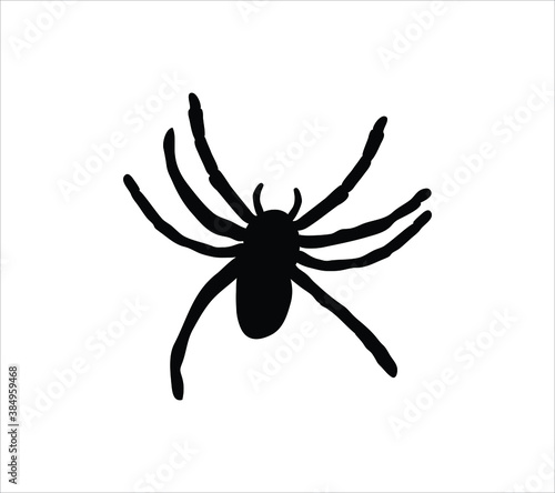 Photo Spider, tarantula vector black icon