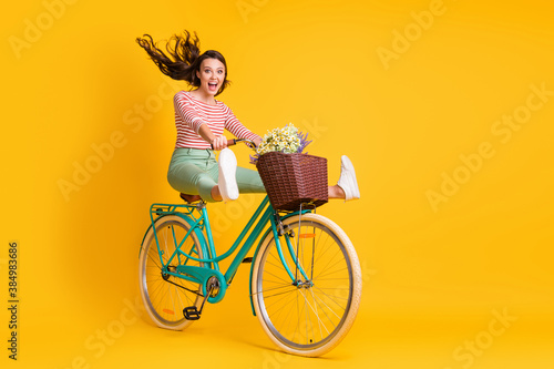 Full length body size photo of funky girl riding bicycle keeping legs up screaming isolated on bright yellow color background - 384983686
