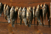 A Bunch Of Dried Salted Fish H...
