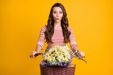 Photo Portrait Of Surprised Girl Keeping Hands On Bicycle With Basket Of Wild Flowers Isolated On Bright Yellow Color Background