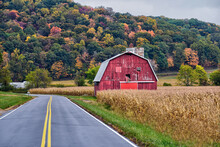 Fall Foliage In Ohio During The Month Of October.