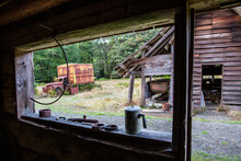 Old Chevrolet Truck At The Kestner Homestead, Quinault Rain Forest, Olympic National Park, Washington State