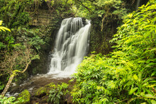Horseshoe Falls, Matai Stream, Matai Falls Walk, The Catlins, South Island, New Zealand, Pacific