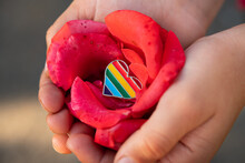 Rainbow Color Lgbt Heart In A Rose Flower.