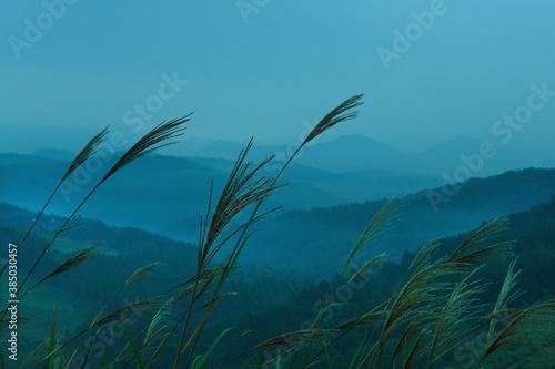 Obraz na plátně 秋吉台から望む朝の山並み