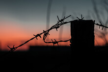 Barbed Wire Fence At Sunset Sk...