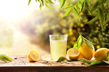 Freshly Squeezed Juice On Wooden Table With Lemons In Nature