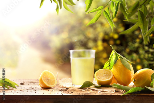 Obraz Freshly squeezed juice on wooden table with lemons in nature - fototapety do salonu