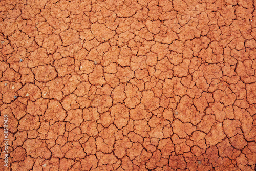 Fotomural Nature background of cracked dry lands