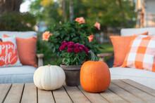 Backyard Seating Area In Fall