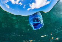 Plastic Bottle Cap Pollution