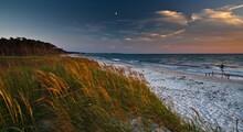Dune Landscape, Westrand Darss, Western Pomerania Lagoon Area National Park, Mecklenburg-Western Pomerania, Germany, Europe