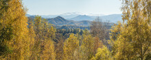 Autumn View. Yellow Trees On T...
