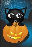 Fototapeta Do akwarium - composition with cobweb, cat, and halloween pumpkin