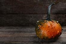 Warty Halloween Pumpkin In Old...