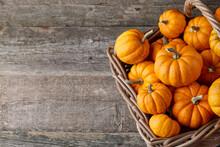 Beautiful Orange Mini Pumpkins...
