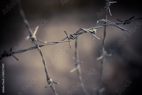 Barbed wire fence Fototapeta